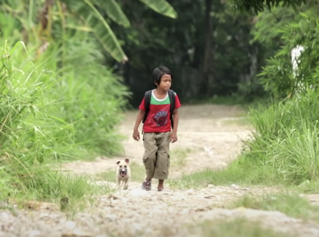Boy and puppy walking together