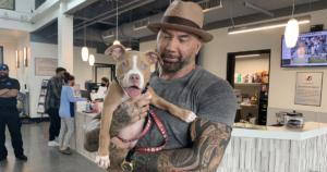 Dave Bautista Adopts Puppy