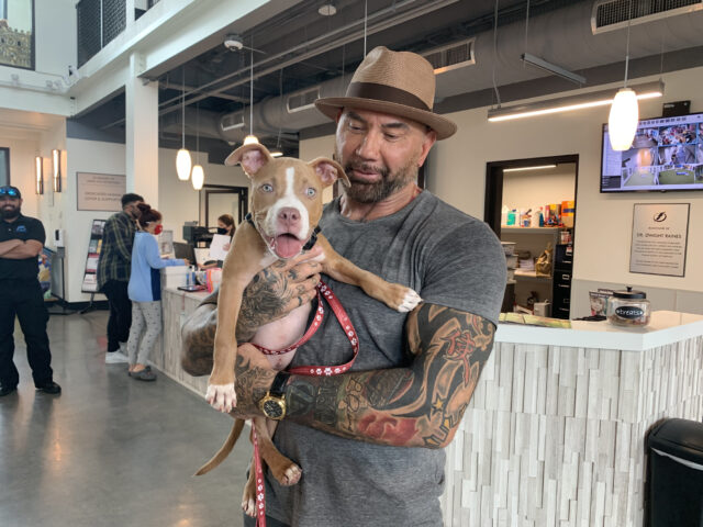 Dave Bottista adopted the dog.