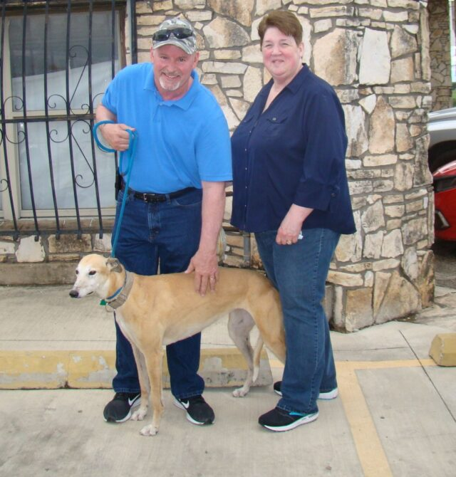 Donna the Greyhound gets adopted