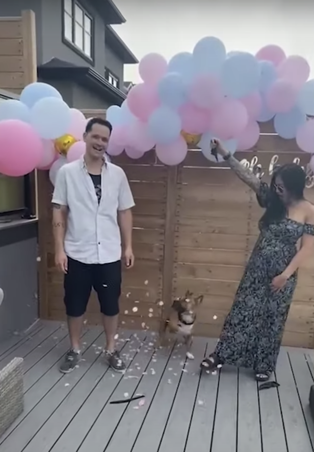 Gender Reveal outcome