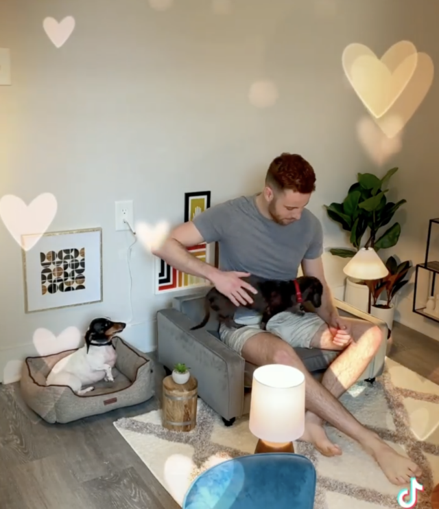 Human in dog living room