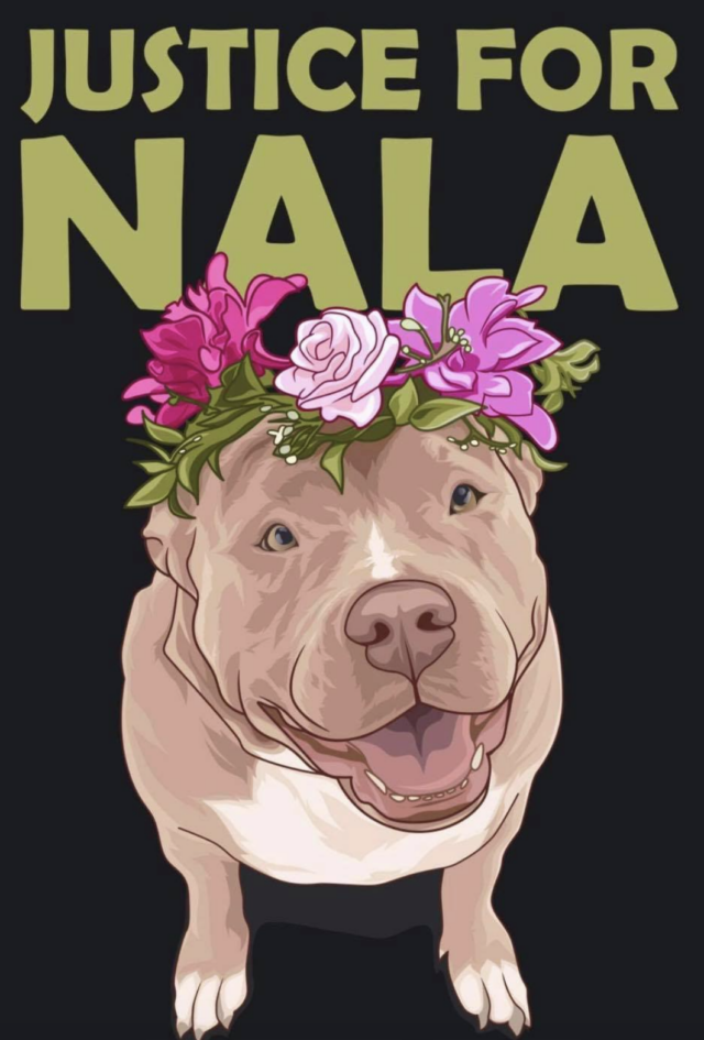 Justice for Nala