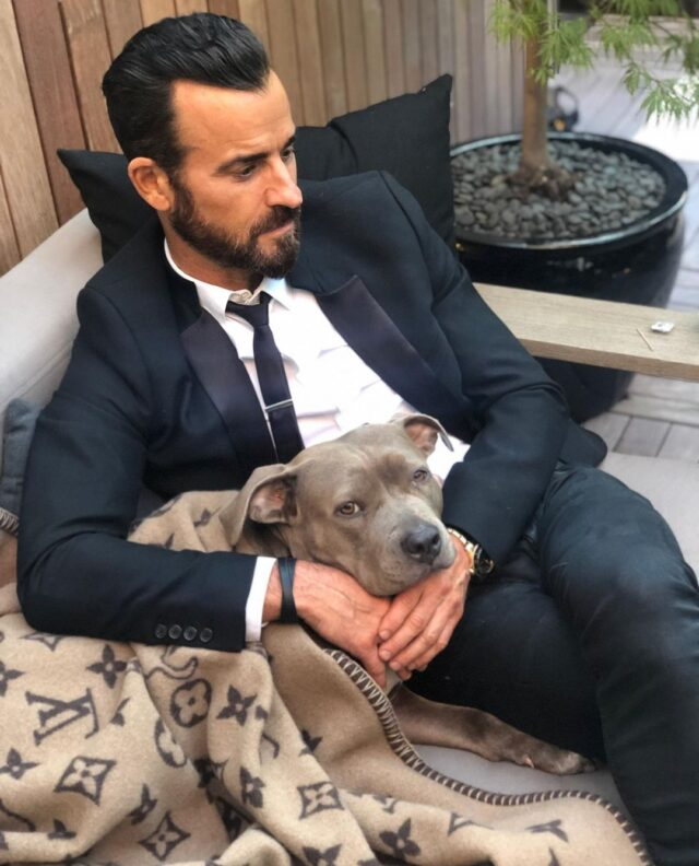 Justin Theroux Rescues Pit Bull