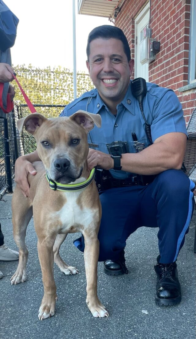 Police officer with Pit Bull