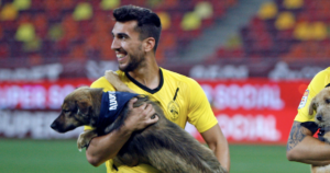 Soccer players hold shelter dogs