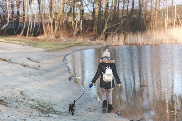 Woman and dog walking near lake