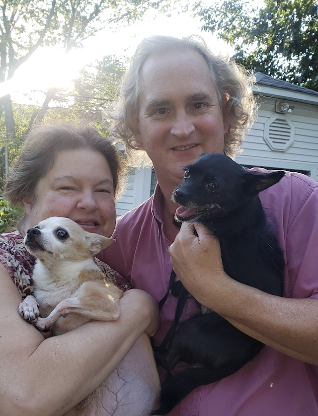 Chihuahua Adopted by New Family