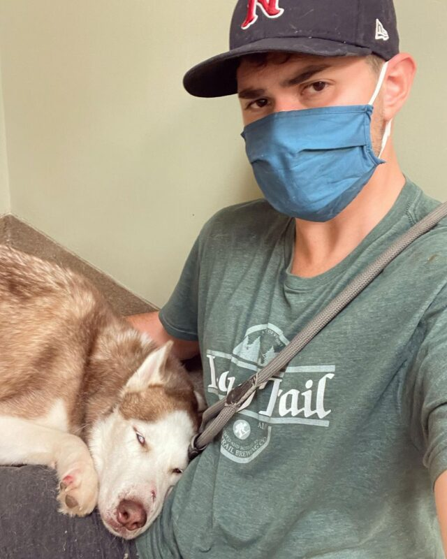 Man with injured Husky