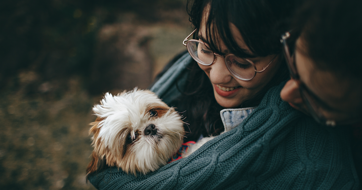 Pets Cause Happiness Study