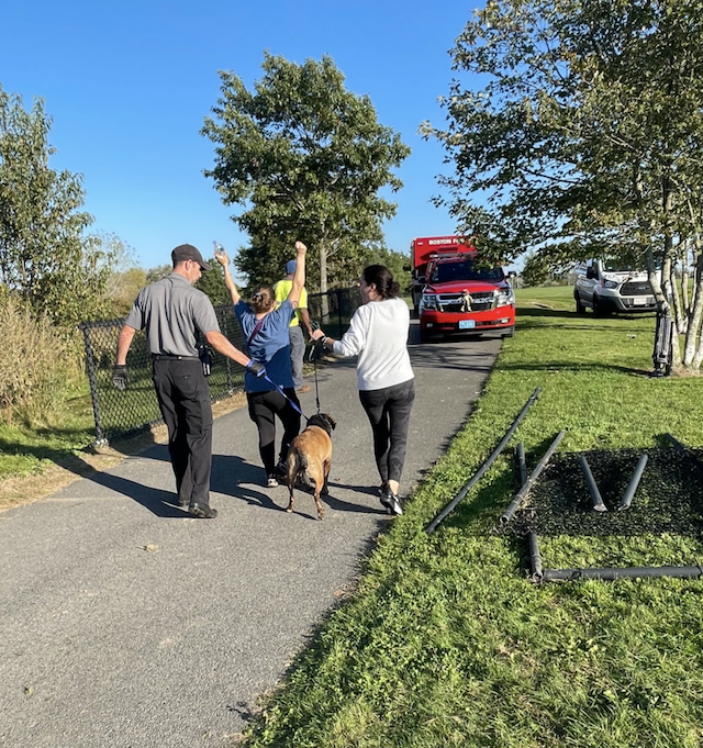 Rescued dog goes home