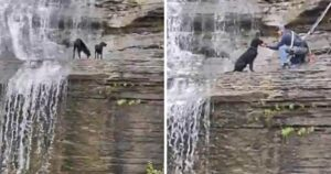 waterfall rescue